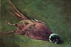 Natura Morta Fagiano - 1966